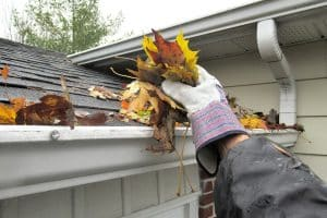 """Nature, """" Clearing Autumn Leaves from Gutters """""""